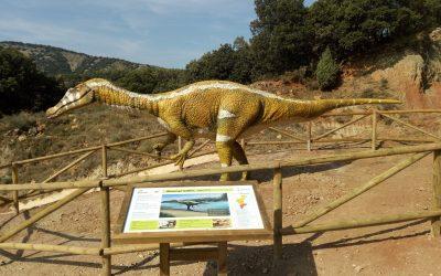 Yacimiento y Museo de Dinosaurios. Cinctorres.
