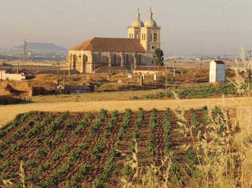 Ciudad de Valladolid y Rutas del vino, Ribera, Cigales, Rueda y Toro