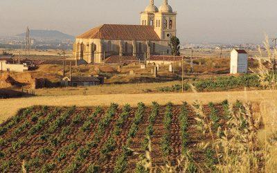 Cultura y rosado por la ruta del vino Cigales