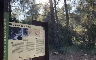 Visita a Las Cuevas de la Araña